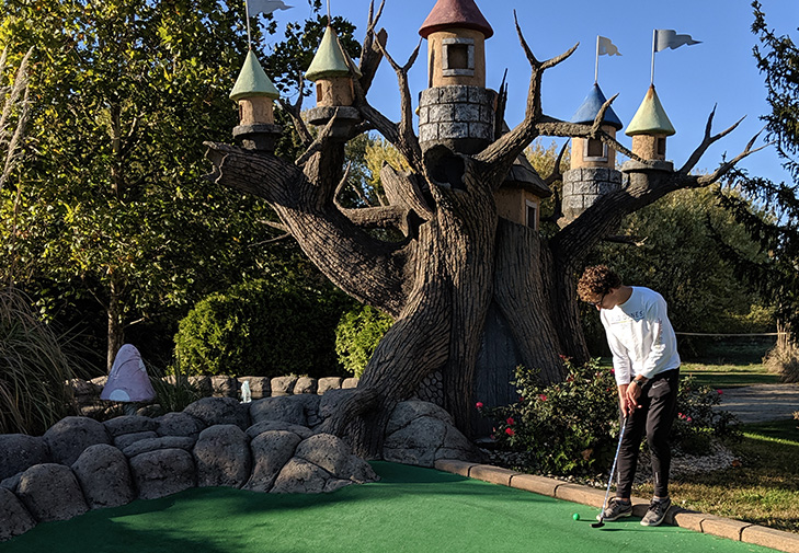 Mini Golf With Castle Tree Background